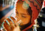 Melhor purificador de água Everest